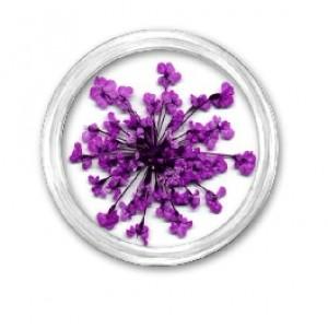 Сухоцветы для нейл-дизайна