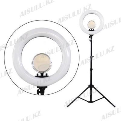 LED Лампа для визажиста кольцевая R-48 Ø46, напольная (в ассорт.)