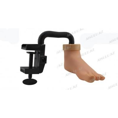 Тренажер-нога учебная для педикюра с зажимом